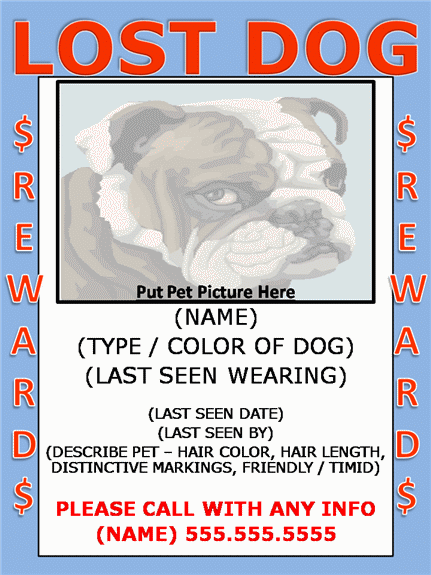 Lost Flyer Pictures to Pin PinsDaddy – Lost Dog Poster Template