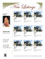 Multiple Listing Flyer (luxury)
